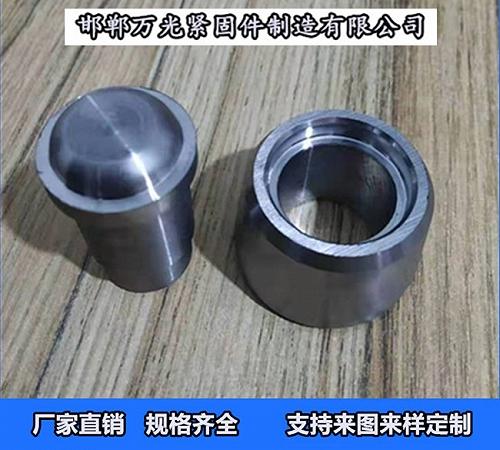爬架導輪_重型導輪_輕型導輪 生產廠家