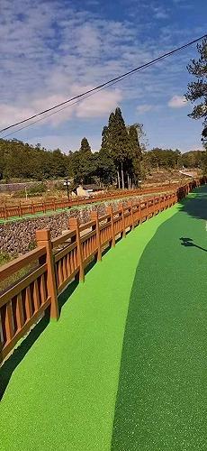 成都市彩色生態透水地坪 壓花混凝土廠家