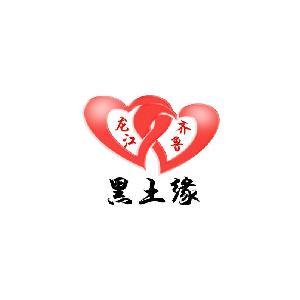 青岛奇之缘网络logo